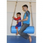Blue Bolster Swing